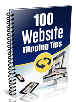 100WebsiteFlippingTips plr 100 Website Flipping Tips
