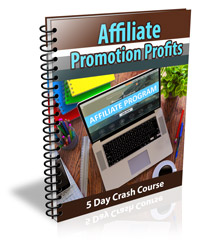3533cover 250 Affiliate Promotion Profits