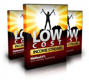 Bundle 300x271 Low Cost Income Stream