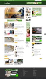 CarpetCleanersBlog p Carpet Cleaners Niche Blog