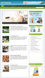 CatTrainingBlog pflip Cat Training Niche Blog