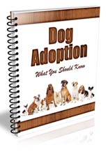 DogAdoptionNwslttr plr Dog Adoption Newsletter