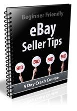 EbaySellerTips plr Ebay Seller Tips