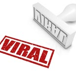 GuarViralVisitorsScript mrr Guaranteed Viral Visitors Script