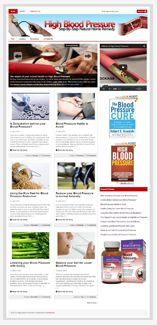 HighBloodPresBlog plr High Blood Pressure Nich Blog