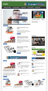 InsuranceNicheBlog pflip Insurance Niche Blog