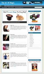 MagicNicheBlog p Magic Niche Blog