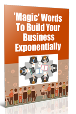 MagicWordsBuildBiz plr Magic Words To Build Your Business Exponentially
