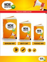 NicheMarketingPro rr Niche Marketing Pro