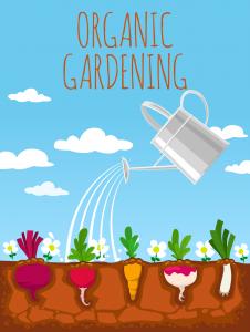 Organic Gardening 226x300 Organic Gardening