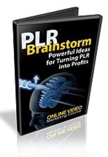 PLRBrainstorm plr PLR Brainstorm