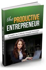 ProductiveEntre mrr The Productive Entrepreneur