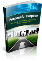 PurposefulPurpose mrr Purposeful Purpose