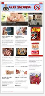 QuitSmokingBlog plr Quit Smoking Niche Blog