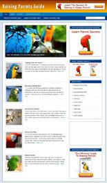 RaisingParrotsBlog pflip Raising Parrots Niche Blog