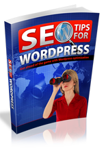 SEOForWordpress rrg SEO Tips For Wordpress