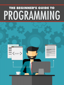 The Beginner s Guide to Programming 226x300 The Beginners Guide to Programming