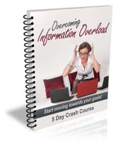 cover 350 245x300 Overcoming Information Overload