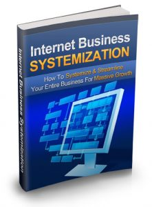 ecover large 221x300 Internet Business Systemization