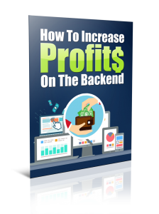 report 1 224x300 How To Increase Profits On The Backend